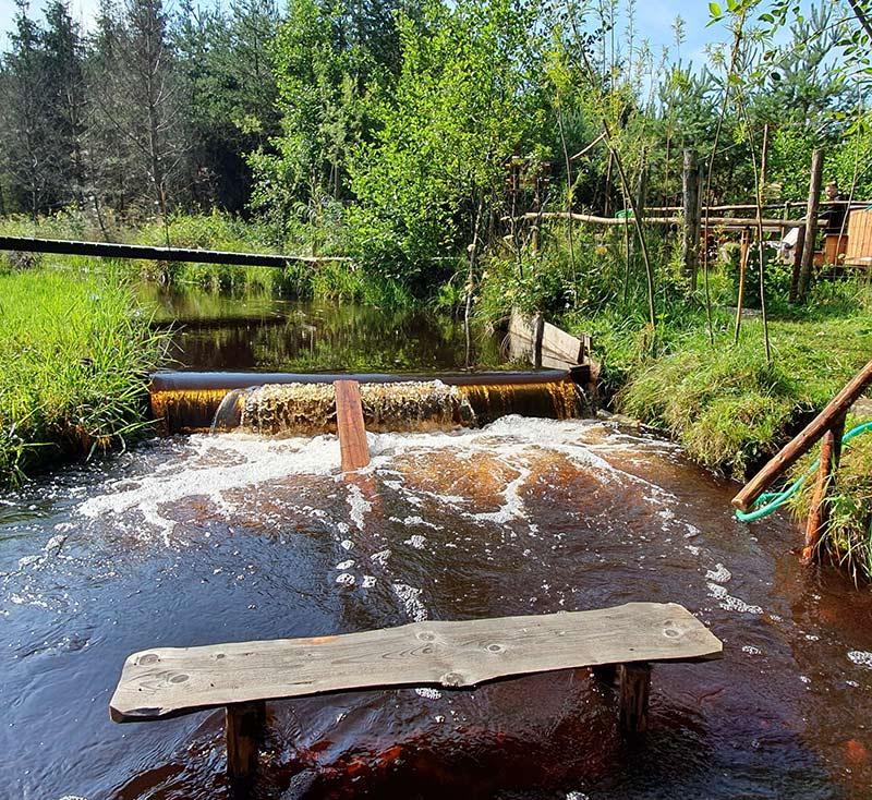 rzeka-lato1